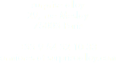 surprise alley 29, rue Meslay 75003 Paris +33 9 54 32 10 33 ormieres at surprisealley.com
